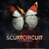 Scurtcircuit (2017)