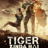 Tigrul: Misiune de salvare (2017)